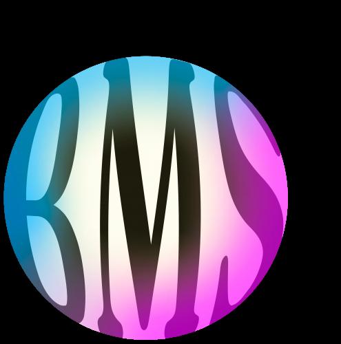 BMS–bel-workshop