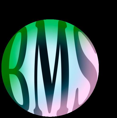 BMS–bel-workshop2